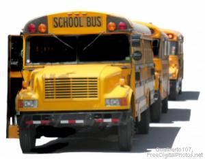 web_school_bus