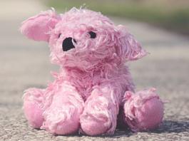 pink stuffed animal