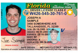 florida driver license