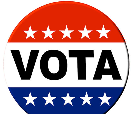 "red,white and blue ""vota"" button"