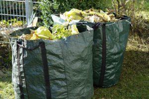 Green bags containing yard trash