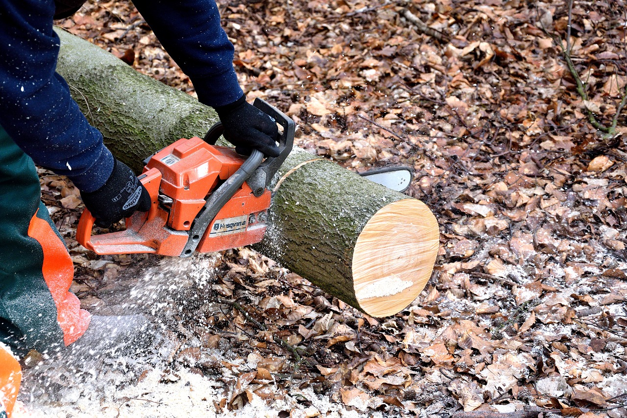 hands holding chainsaw cutting into tree