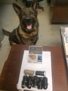 German Sheppard poses with some of her narcotics finds.