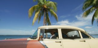 1950s car and palm tree
