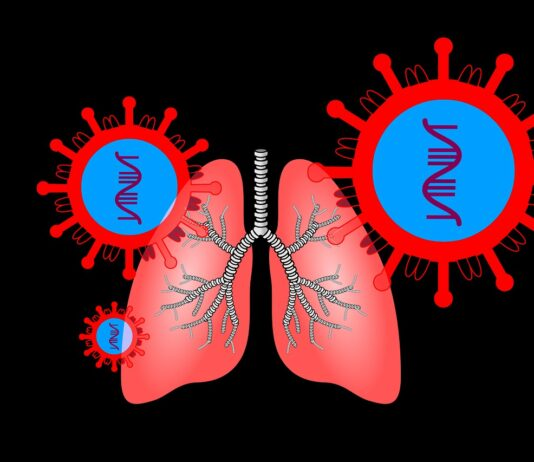 diagram of lungs and virus