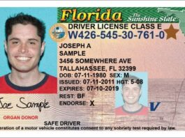 Florida drivers license