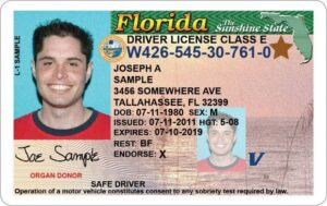 Florida drivers license