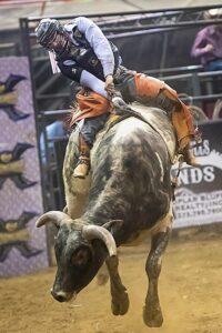 bull rider on bull