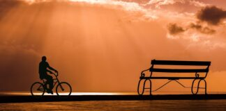 Bicycle rider in the sunset