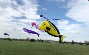 Large kites flying over park