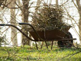 Wheelbarrow carrying tree limbs